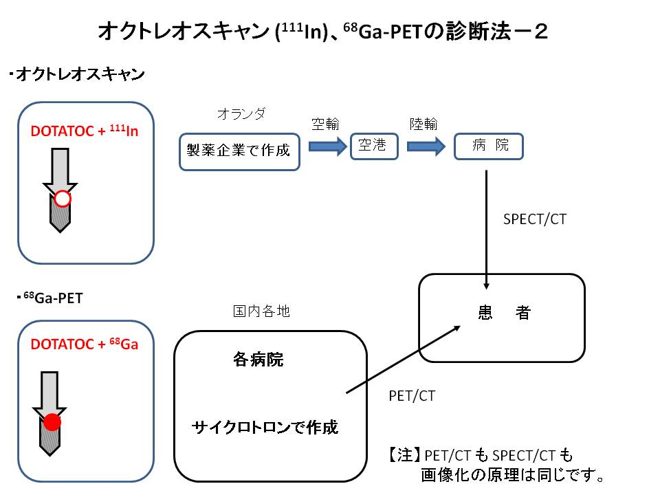 PET-OCT-genri.jpg